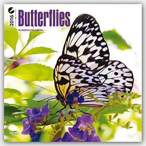 Butterflies 2016 - Schmetterlinge - 18-Monatskalender: Original BrownTrout-Kalender [Mehrsprachig] [Kalender] (Wall-Kalender)