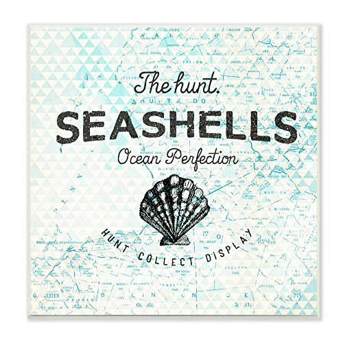 Seashell Plaques - Stupell Home Décor Seashells Hunt Collect Display With Shell Wall Plaque, 12 x 0.5 x 12, Proudly Made in USA