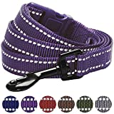 Blueberry Pet 6 Colors Durable 3M Reflective Classic Dog Leash 5 ft x 3/4, Violet, Medium, Leashes for Dogs
