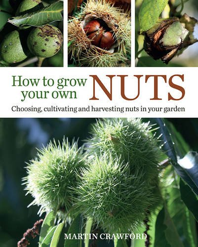 How To Grow Your Own Nuts  Choosing Cultivating And Harvesting Nuts In Your Garden