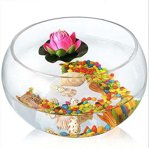 SanQing Acuario de Vidrio Redondo Tanque de Peces Transparente Mini Tortuga Tanque Goldfish Bowl Sala de Estar Escritorio en casa,B,,25CM: Amazon.es: Hogar