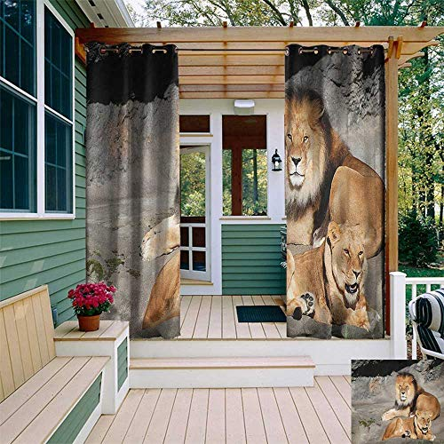 (leinuoyi Zoo, Outdoor Curtain Extra Long, Male and Female Lions Basking in The Sun Wild Cats Habitat King of Jungle, Balcony Curtains W120 x L108 Inch Pale Brown Grey Yellow)