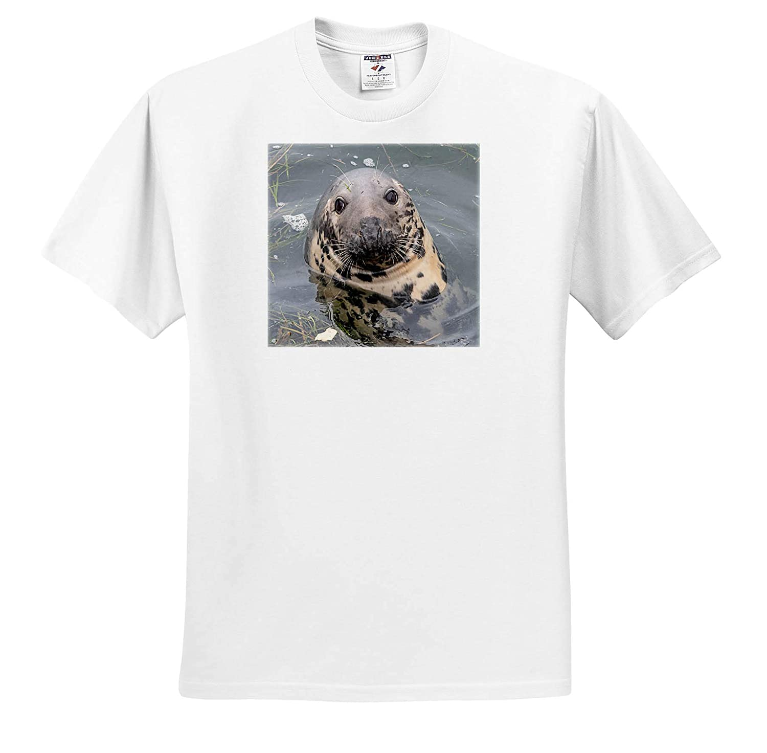 T-Shirts 3dRose Roni Chastain Photography Gray Seal