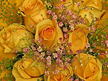 Amazon laminated poster roses birthday greeting flowers yellow laminated poster roses birthday greeting flowers yellow bouquet poster print 24 x 36 m4hsunfo