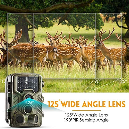 COOLIFE 21MP 1080P HD Caméra de Chasse Caméra de Surveillance Étanche 49 LEDs Grand Angle 125 ° De Vision Nocturne 25m… 5