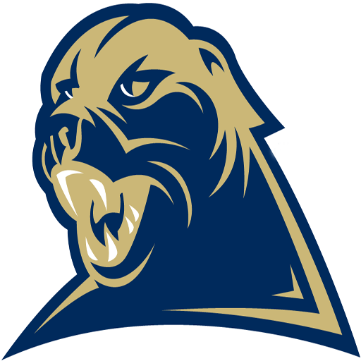 Pittsburgh Panthers Football Videos