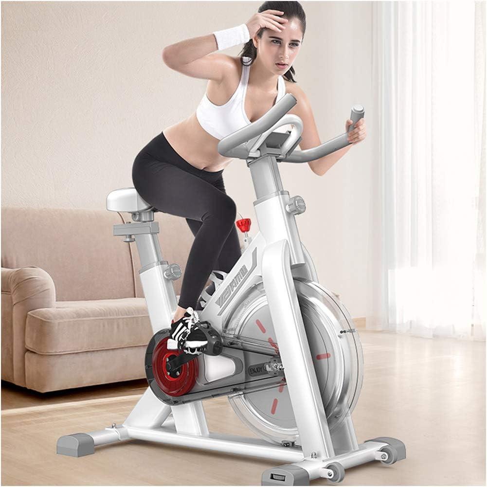 TXDWYF Unisex Adult Bicicleta Estática/Bicicletas Estáticas y de Spinning para Fitness/Bicicleta Fitness de Gimnasio Ejercicio/Ajustable Resistencia/Volante de Inercia