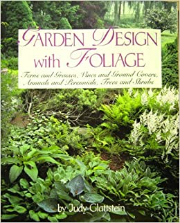 Garden Design With Foliage Ferns And Grasses Vines And Ground