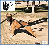 Big dog harness padded by KnK Dog Supplies | Weight Pulling Harness Vest Large Dogs Training Ruffwear quick Walking Canicross, Keep your Dog amused and in Great Shape by draining accumulated energy!