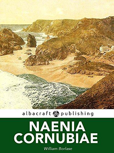 Amazoncom Naenia Cornubiae A Descriptive Essay Illustrative Of  Naenia Cornubiae A Descriptive Essay Illustrative Of The Sepulchres And  Funereal Customs Of The