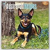 Australian Kelpies 2016 Square 12x12 (Multilingual Edition)