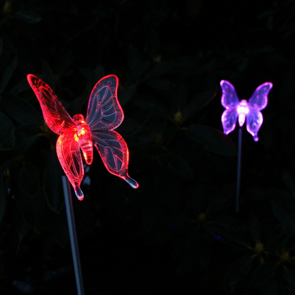 Solar Garden Butterfly Stake Lights, 2 Piece: Amazon.co.uk: Kitchen U0026 Home