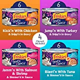 Purina Friskies Gravy Wet Cat Food Variety