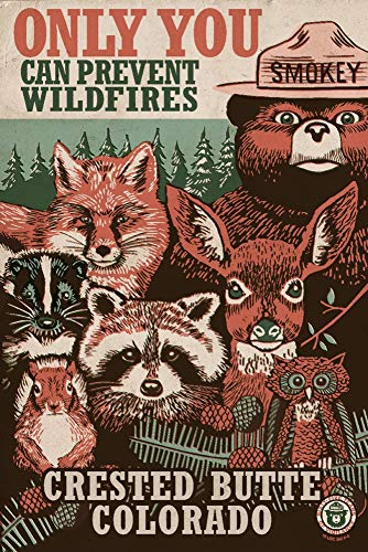 - Crested Butte, Colorado - Smokey Bear and Woodland Creatures 98476 (9x12 Art Print, Wall Decor Travel Poster)