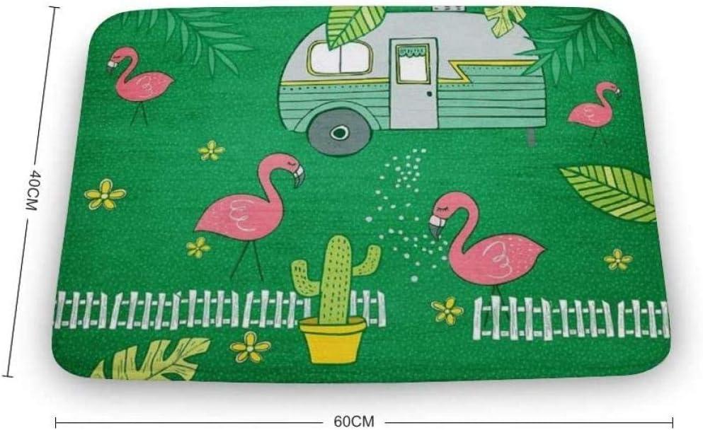 WSND Felpudo de Interior Suave Camping Flamingos Alfombras de ...