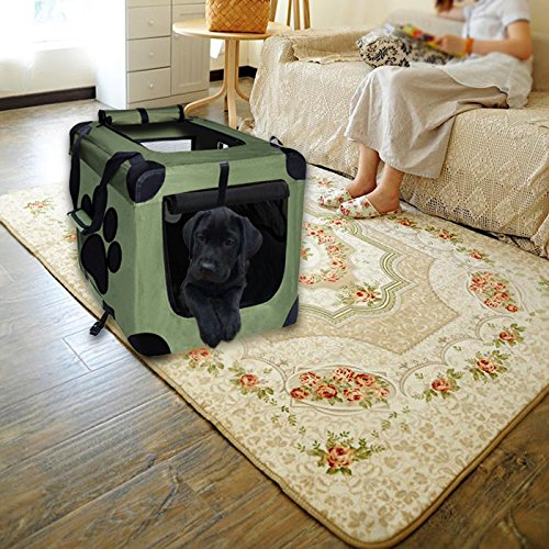 EXPAWLORER Collapsible Foldable Dog Crate, Indoor/Outdoor Cat Home, Deluxe Pet Carrier, Reduces Anxiety Green Small 20-Inch