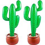 Amazon.com: Fun Express Fiesta Cactus - Juego de pelota de ...