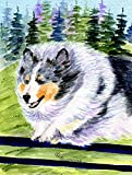 Caroline's Treasures SS8305CHF Sheltie Flag Canvas, Large, Multicolor