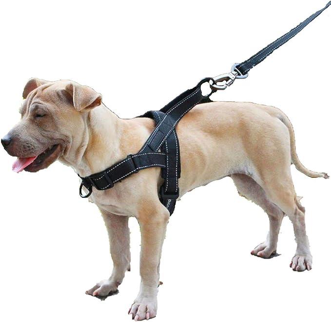 CHUNXU Arnés para Perro, fácil de Poner y Quitar, Ajustable ...