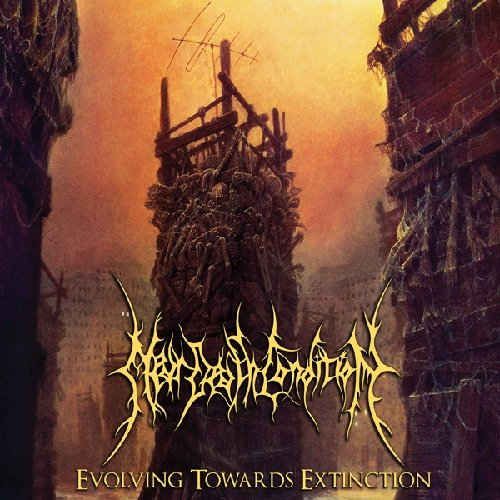 CD : Near Death Condition - Evolving Towards Extinction (CD)