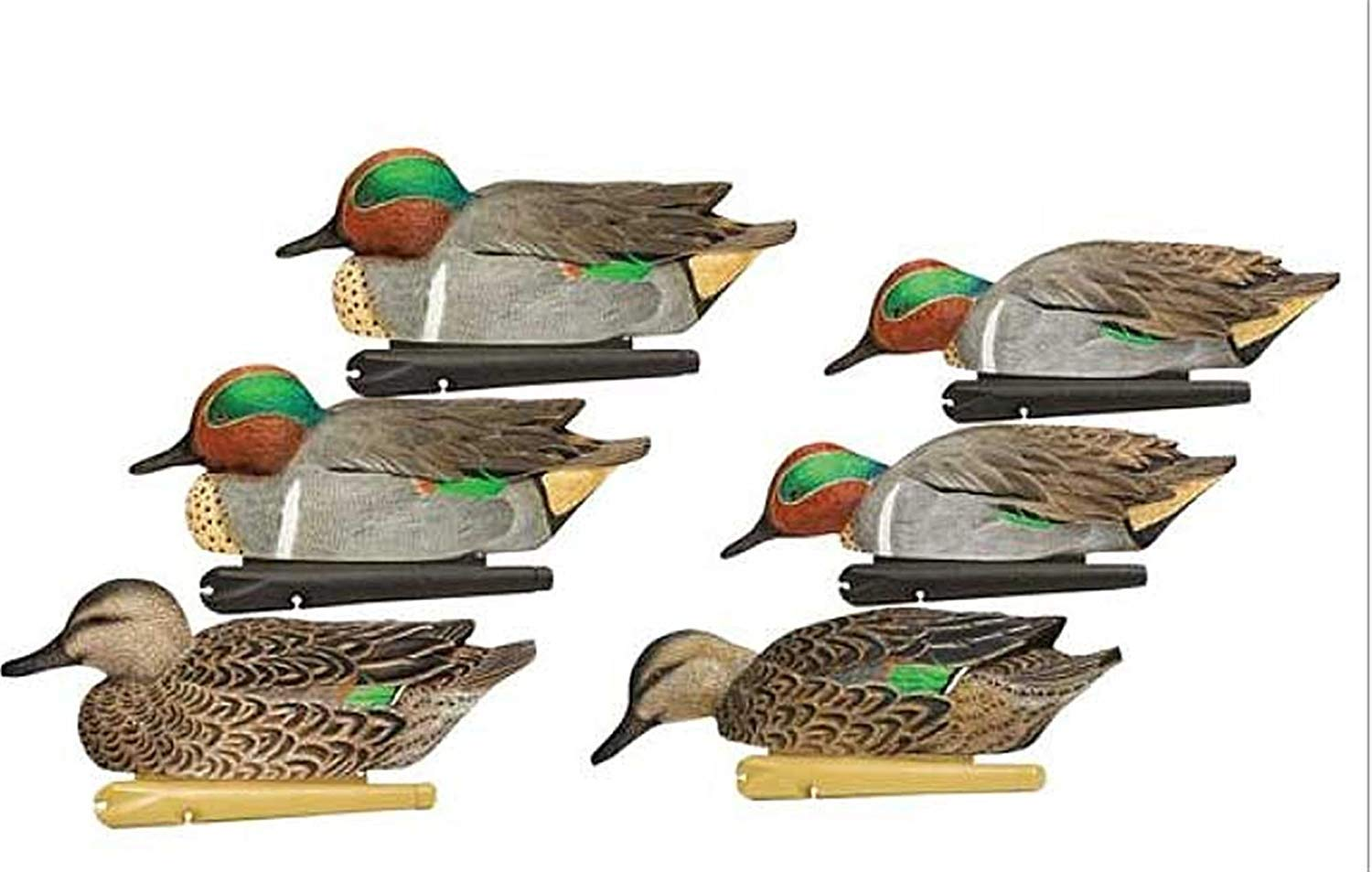 AvianX Top Flight Duck Green Wing Teal Floater Decoy (6 Pack), Brown (4-Units)