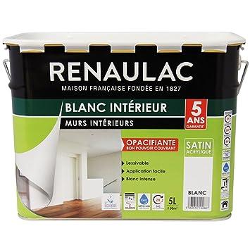 Renaulac Peinture Intrieur Murs  Plafonds Bicouche Acrylique Blanc