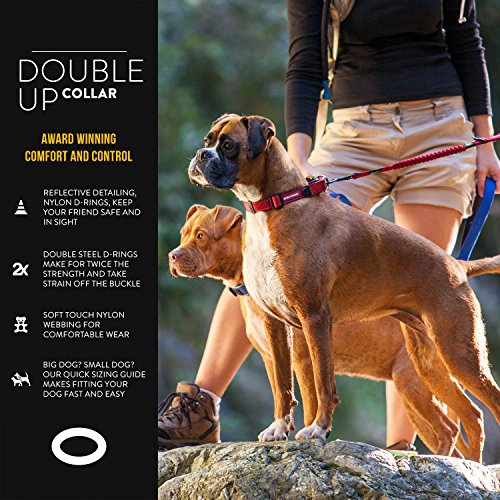 Picture of EzyDog Double Up Premium Nylon Dog Collar with Reflective Stitching - Double D-Rings for Superior Strength, Safety, and Comfortability - Non-Rusting and Includes an ID Attachment (Large, Black)