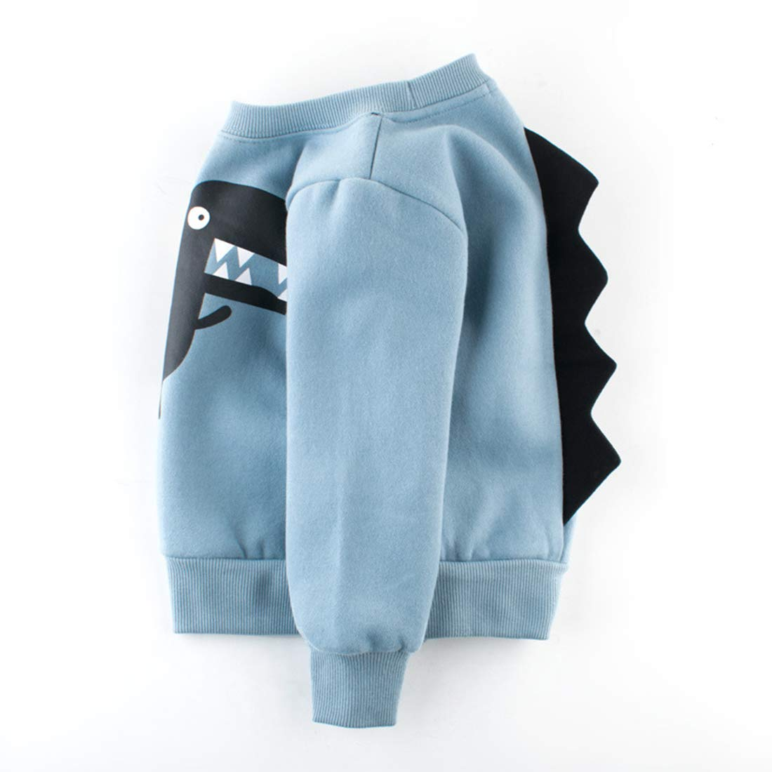 queenland Kids Slouchy Cute Dinosaur Cotton Sweatshirt Pullover Toddler Tops Blouse