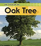 Oak Tree, Angela Royston, 1432925482