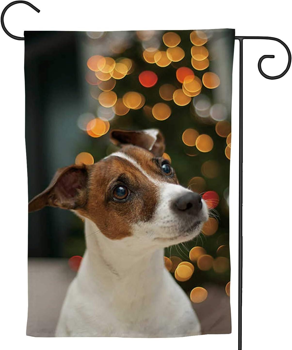C COABALLA Cute Jack Russell Terrier Dog,Welcome Garden Flag Double Sided Farmhouse Burlap Rustic Yard Outdoor Decoration Christmas 12.5''x18''