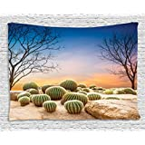 Cactus Decor Tapestry by Ambesonne, Cactus Balls with Spikes on a Montain Desert Sand Mexican Landscape Photo, Wall Hanging for Bedroom Living Room Dorm, 80WX60L Inches, Multicolor