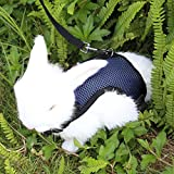 Pettom Rabbits Harness with Elastic Leash for Small Animal Adjustable Soft Harness and Lead Set for Bunny Cat Little Pet Walking (S(Chest:10.8-12.9 in) - Blue)