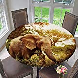 Mikihome The Round Table Cloth Huge Elephant Outdoors,Big Five,Game Drive,African Nature,Beautiful Wild Animal for Birthday Party, Graduation Party 47.5''-50'' Round (Elastic Edge)