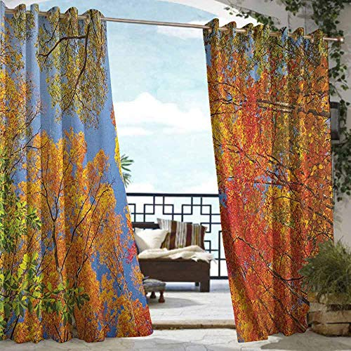 DonaHome Indoor/Outdoor Curtains,Leaves Falls Colors National Country Park Nature Observation Base Perspective Photo,Privacy Assured Window Treatment,W120x108L Orange Blue Green