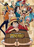 One Piece Group 1 High-End Wall Scroll Anime Posters