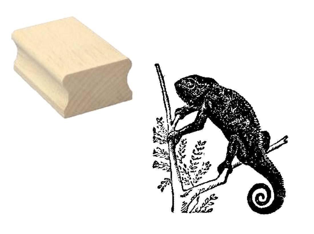 Embossing Basteln Chamaeleon Echse Stempel Holzstempel Motivstempel /« CHAM/ÄLEON /» Scrapbooking