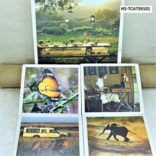 Retro Safari Set of 4 Coasters & 6
