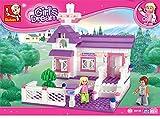 Sluban GIRL IS DREAM-193PCS ( M38-B0156 ) (Lego compatible)