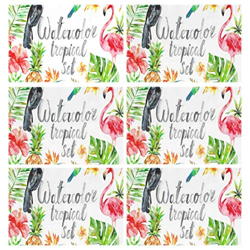 Cocoa trade Heat Resistant Placemats for Kitchen Table Mats Dining Room,Watercolor Tropical Clipart Summer Flamingo Flower Washable Insulation Non Slip Placemat 12x18 inch(6 pcs)