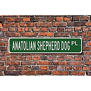 Puernash Tin Signs Home Decoration Anatolian Shepherd Dog Gift Sign Dog Lover Gift Street Sign Art Wall Decor Metal Sign 4 x 16 11