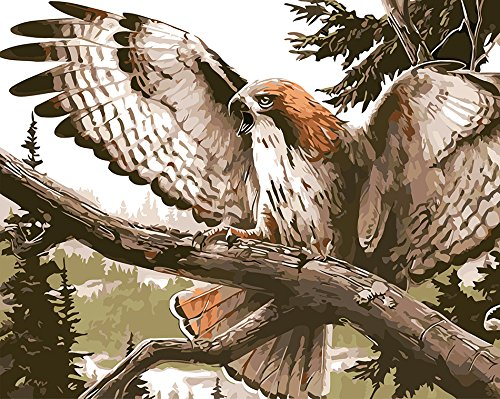 Prime Leader Wooden Framed Diy Oil Painting, Paint By Number Kit The Eagle Stretched Its Wings 16x20 Inch
