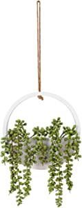 "WOODWORD Fake Hanging Plants - Artificial Succulants Plants for Home Decor - 18"" Faux Hanging Plants Comes with A Lanyard"