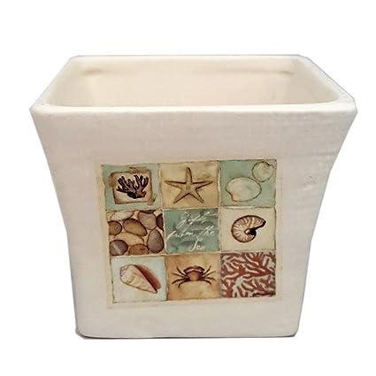 Amazon Crazy Mountain Seashell Vase Designed By Stephanie