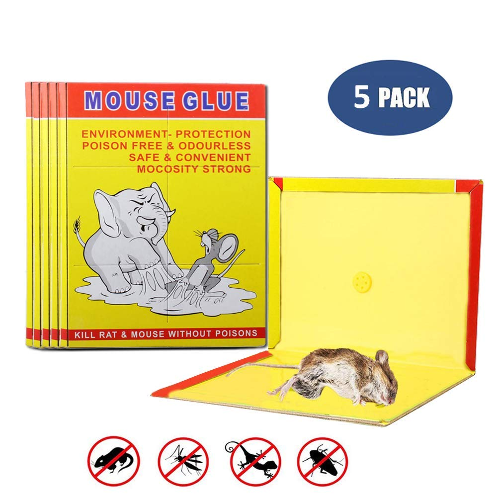 5 Pack/Mouse Glue Boards,Sticky Traps for Mice,Large Rat Glue Pads,Extra Sticky Traps with Peanut Butter Large Capture Area,Catch Mouse Indoor and Outdoor (5) Carmaxs