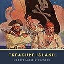 Treasure Island Hörbuch von Robert Louis Stevenson Gesprochen von: Kara Shallenberg