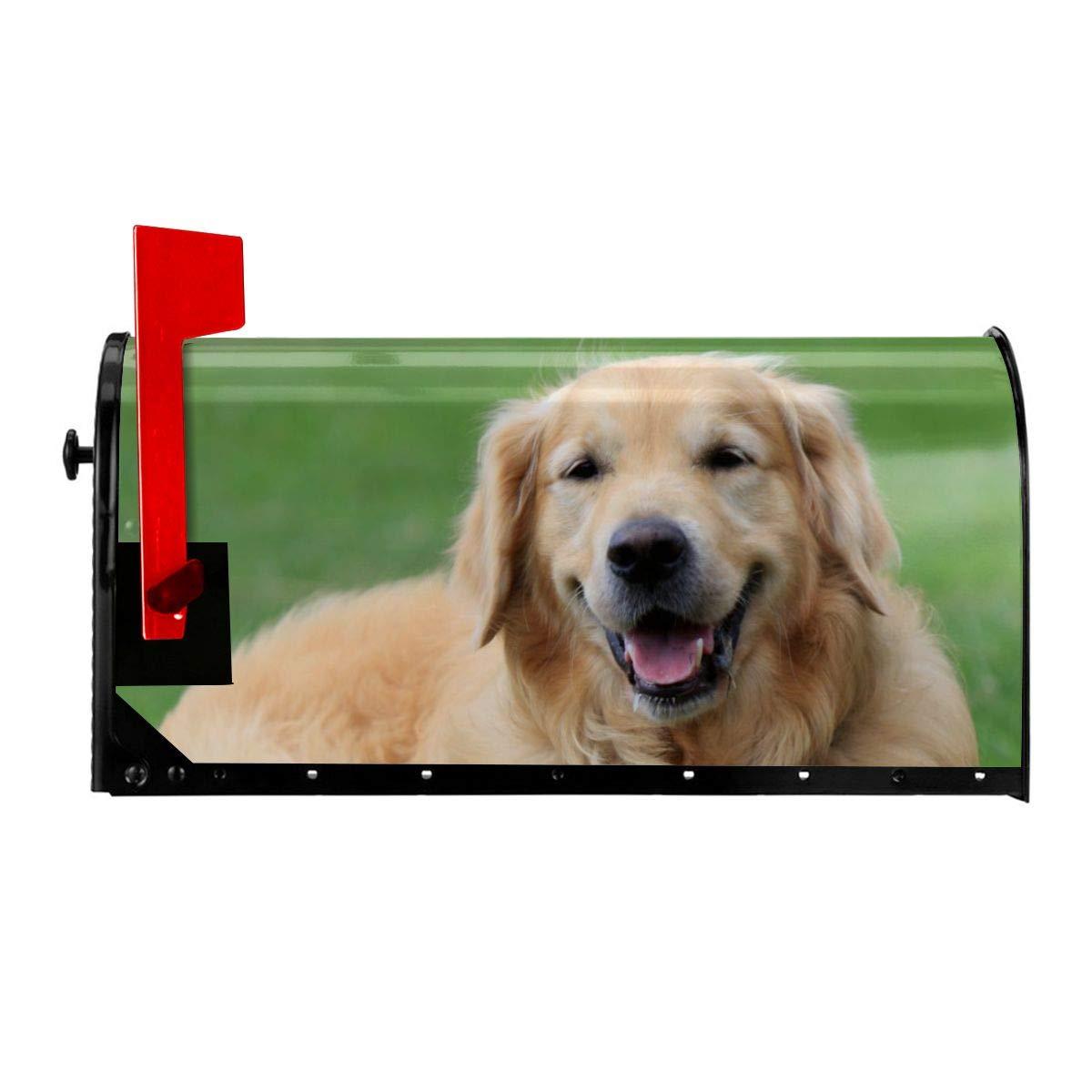 25.5 W X 21 L HFVNTXr Happy Golden Retriever Dog Standard Size Mailbox Set for Outdoor Garden Decoration 21 W X18 L