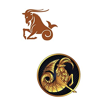Details about  /Wall Decal Capricorn Zodiac Sign Fantastic Animal Vinyl Sticker ed2107