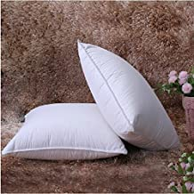80% Natural White Duck Down 20% White Duck Feather Bedroom Soft Pillow Insert 100% Organic Cotton 280TC (European Square(26x26 inch))
