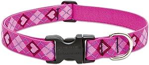"Lupine Medium Dog Collar 1"" Wide Puppy Love Design adjusts from 12"" to 20"""