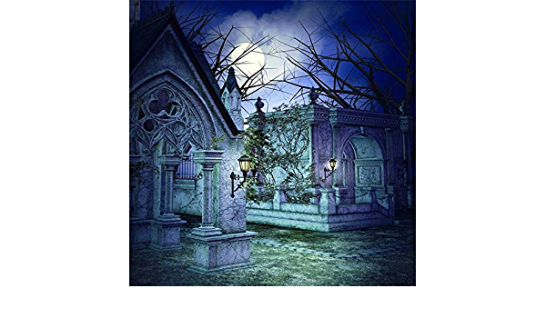 GoEoo 10x10ft Mystery Graveyard Backdrop Misty Dark Magic Scary Moonlight Stone Grave Tomb Landscape Horror Theme Party Halloween Photography Background Video Drapes Photo Studio Props